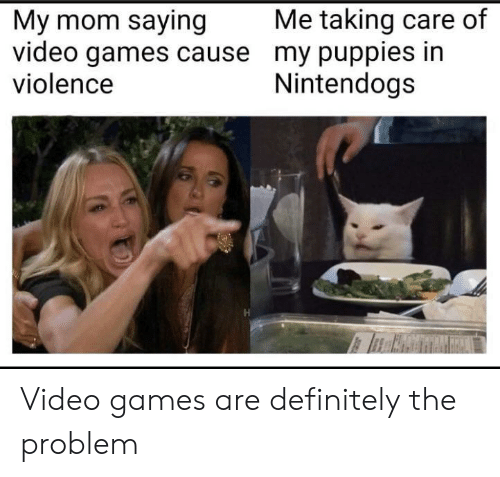 Definitely, Puppies, and Video Games: Me taking care of  My mom saying  video games cause my puppies in  violence  Nintendogs Video games are definitely the problem