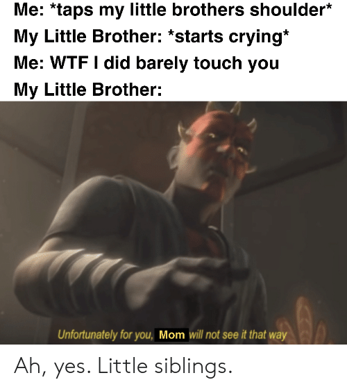 my little: Me: *taps my little brothers shoulder*  My Little Brother: *starts crying*  Me: WTF I did barely touch you  My Little Brother:  Unfortunately for you, Mom will not see it that way Ah, yes. Little siblings.