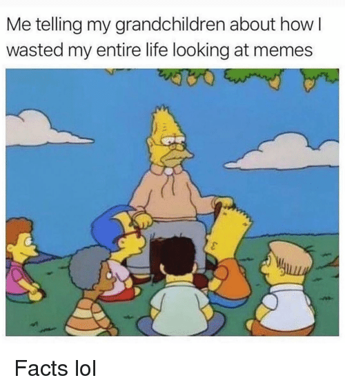Facts, Funny, and Life: Me telling my grandchildren about how  wasted my entire life looking at memes Facts lol