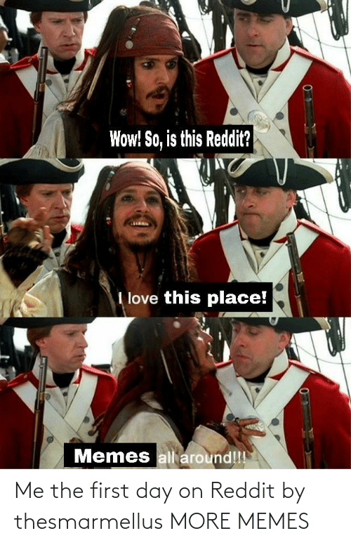 First Day: Me the first day on Reddit by thesmarmellus MORE MEMES