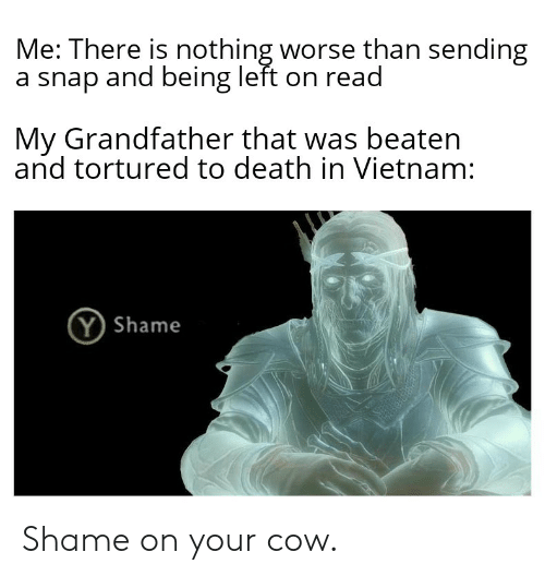 Death, Vietnam, and Dank Memes: Me: There is nothing worse than sending  a snap and being left on read  My Grandfather that was beaten  and tortured to death in Vietnam:  (Y Shame Shame on your cow.