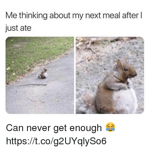 Never, Next, and Can: Me thinking about my next meal after l  just ate Can never get enough 😂 https://t.co/g2UYqlySo6