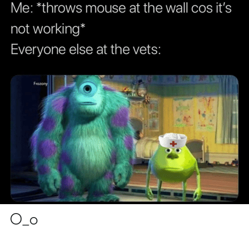 Mouse, Working, and The Wall: Me: *throws mouse at the wall cos it's  not working*  Everyone else at the vets:  Frozony O_o