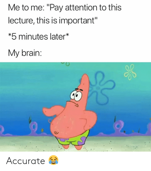 "Brain, This, and This Is: Me to me: ""Pay attention to this  lecture, this is important""  *5 minutes later*  My brain: Accurate 😂"