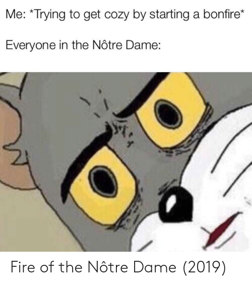 Fire, Notre Dame, and Starting A: Me: *Trying to get cozy by starting a bonfire*  Everyone in the Nôtre Dame: Fire of the Nôtre Dame (2019)