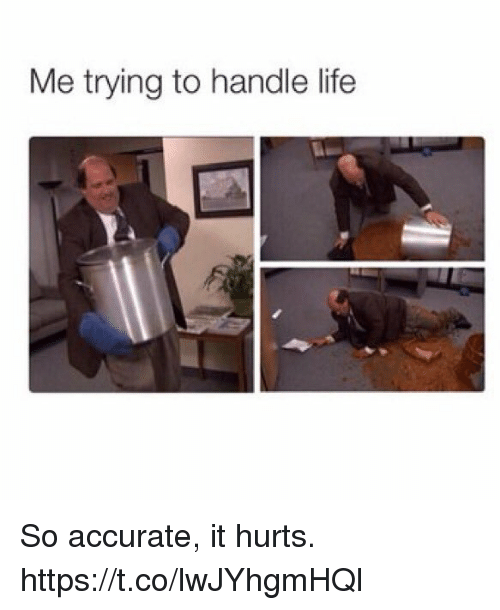 Life, Hurts, and Handle: Me trying to handle life So accurate, it hurts. https://t.co/lwJYhgmHQl