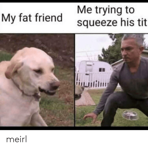 Fat, MeIRL, and Doma: Me trying to  My fat friendsqueeze his tit  doma meirl