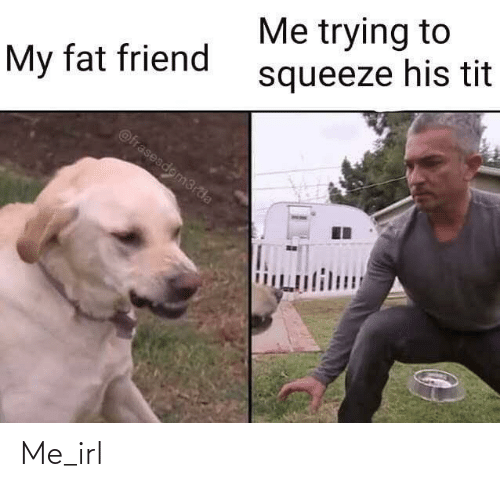Fat: Me trying to  squeeze his tit  My fat friend  @frasesdom3rda  lт  பிய Me_irl