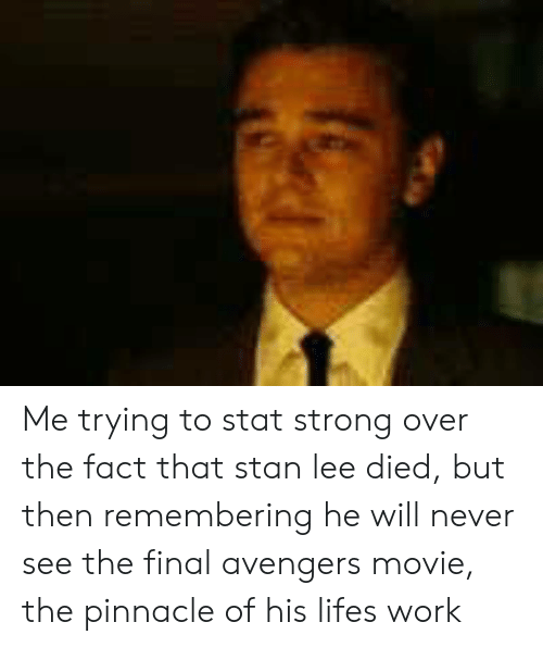 Pinnacle: Me trying to stat strong over the fact that stan lee died, but then remembering he will never see the final avengers movie, the pinnacle of his lifes work