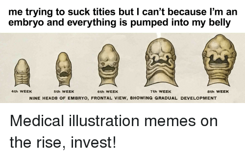Memes Invest And Medical Me Trying To Suck Tities But I Can