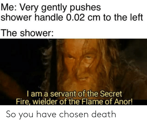 I Am A: Me: Very gently pushes  shower handle 0.02 cm to the left  The shower:  I am a servant of the Secret  Fire, wielder of the Flame of Anor! So you have chosen death