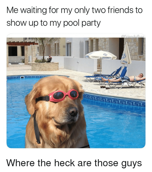 pool-party: Me waiting for my only two friends to  show up to my pool party Where the heck are those guys