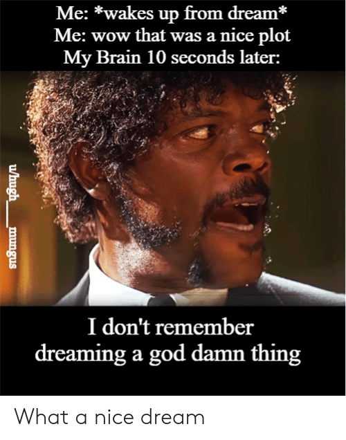 God, Wow, and Brain: Me: *wakes up from dream*  Me: wow that was a nice plot  My Brain 10 seconds later:  I don't remember  dreaming a god damn thing  /hugh  mungus What a nice dream
