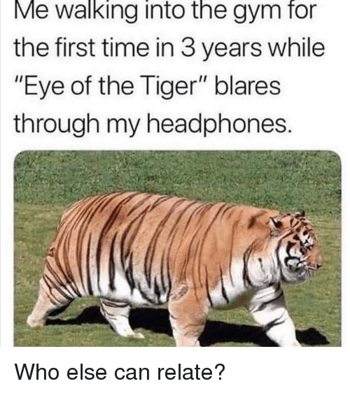 "Gym, Eye of the Tiger, and Headphones: Me walking into the gym for  the first time in 3 years while  ""Eye of the Tiger"" blares  through my headphones Who else can relate?"