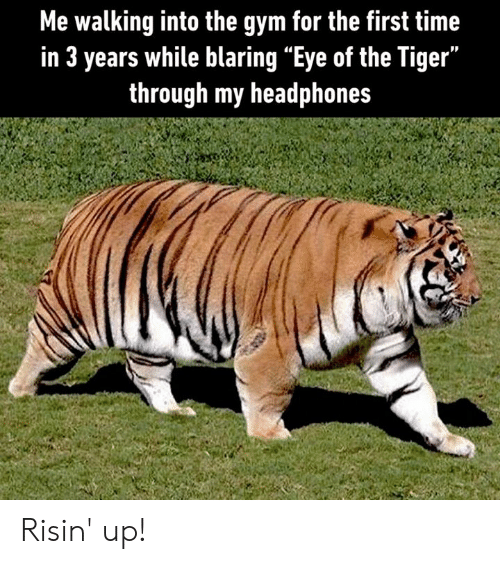 """Dank, Gym, and Eye of the Tiger: Me walking into the gym for the first time  in 3 years while blaring """"Eye of the Tiger""""  through my headphones Risin' up!"""