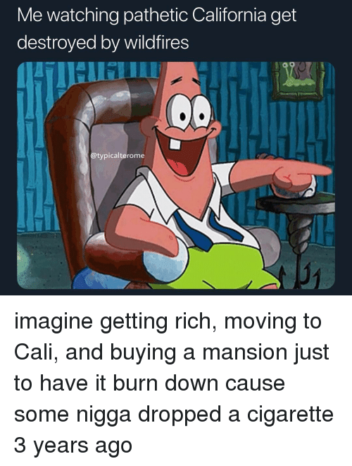 cali: Me watching pathetic California get  destroyed by wildfires  TIHI IU  @typicalterome  31 imagine getting rich, moving to Cali, and buying a mansion just to have it burn down cause some nigga dropped a cigarette 3 years ago