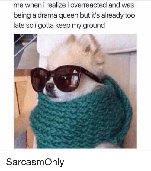 Funny, Memes, and Queen: me when i realize i overreacted and was  being a drama queen but it's already too  late so i gotta keep my ground SarcasmOnly