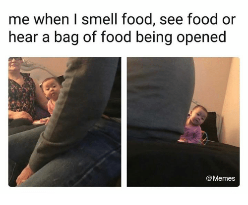 I Smell Food: me when I smell food, see food or  hear a bag of food being opened  @Memes