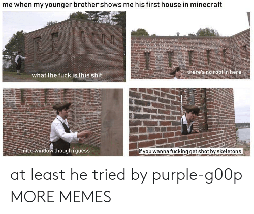 Dank, Fucking, and Memes: me when my younger brother shows me his first house in minecraft  there's no roof in here  what the fuck is this shit  nice window though i guess  if you wanna fucking get shot by skeletons at least he tried by purple-g00p MORE MEMES