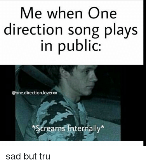 Me When One Direction Song Plays in Public Direction Loverxx