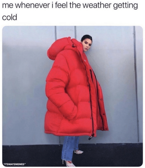 """The Weather, Weather, and Cold: me whenever i feel the weather getting  cold  """"ITSMAYSMEMES"""""""