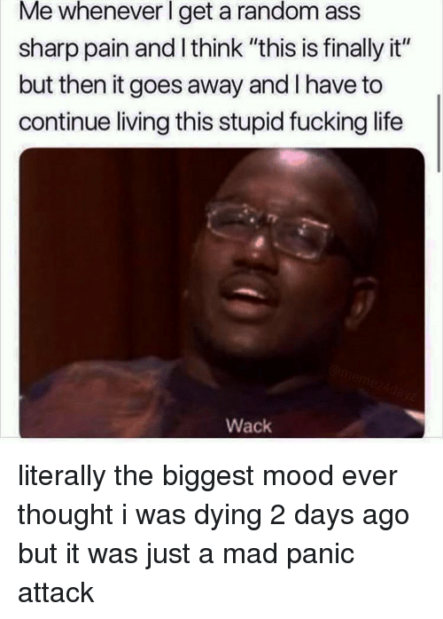"Ass, Fucking, and Life: Me  whenever  l  random  get a  sharp pain and l think ""this is finally it""  but then it goes away and I have to  continue living this stupid fucking life  ass  Wack literally the biggest mood ever thought i was dying 2 days ago but it was just a mad panic attack"