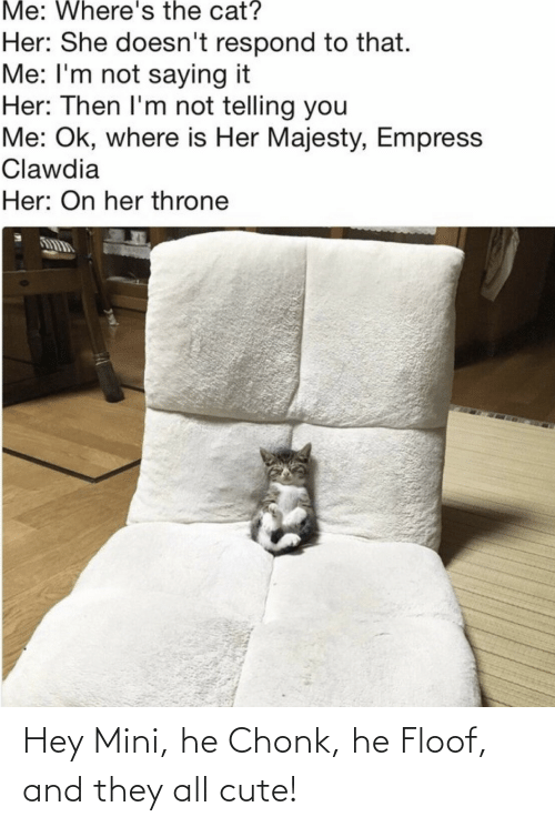Im Not Saying: Me: Where's the cat?  Her: She doesn't respond to that.  Me: I'm not saying it  Her: Then I'm not telling you  Me: Ok, where is Her Majesty, Empress  Clawdia  Her: On her throne Hey Mini, he Chonk, he Floof, and they all cute!