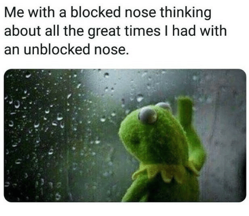 All The, All, and Times: Me with a blocked nose thinking  about all the great times I had with  an unblocked nose.