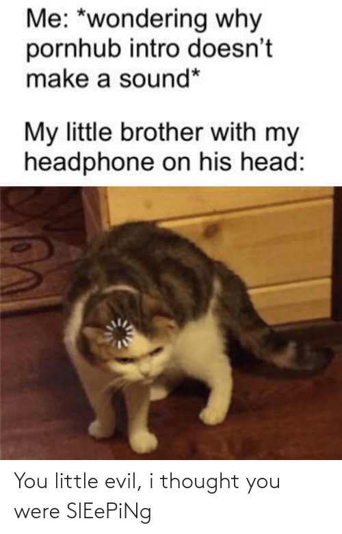 i thought: Me: *wondering why  pornhub intro doesn't  make a sound*  My little brother with my  headphone on his head: You little evil, i thought you were SlEePiNg