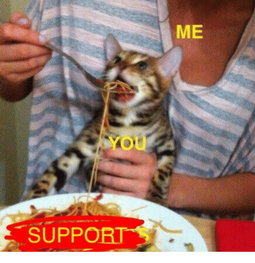You, Me You, and Support: ME  You  SUPPORT