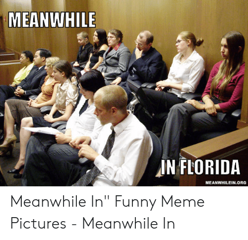 "Funny, Meme, and Florida: MEANWHILE  IN FLORIDA  MEANWHILEIN.ORG  AY Meanwhile In"" Funny Meme Pictures - Meanwhile In"
