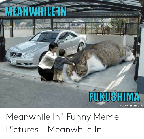 "Funny, Meme, and Pictures: MEANWHILE IN  FUKUSHIMA  MEANWHILEIN.ORG Meanwhile In"" Funny Meme Pictures - Meanwhile In"