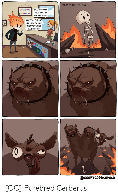 "Hello, Today, and Happiness: MEANWHILE, IN HELL...  HELLO MR HADES  WHAT CAN I D0  CERBERUS  HAPPINESS  FOR yoU TODAY?  HH  DON'T yoU ""HELLO""  ME!!! you TOLD ME  THAT THEY WERE  ALL PUREBRED  REUND  DAY  @G00FYGODSCOMICS [OC] Purebred Cerberus"