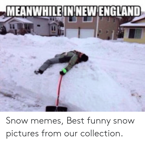 England, Funny, and Memes: MEANWHILEIN NEW ENGLAND Snow memes, Best funny snow pictures from our collection.