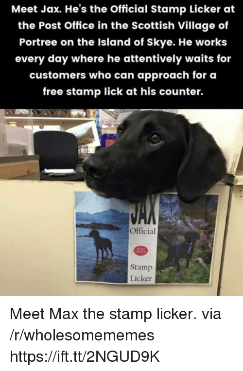 the island: Meet Jax. He's the Official Stamp Licker at  the Post Office in the Scottish Village of  Portree on the Island of Skye. He works  every day where he attentively waits for  customers who can approach for oa  free stamp lick at his counter.  Official  Stamp  Licker Meet Max the stamp licker. via /r/wholesomememes https://ift.tt/2NGUD9K