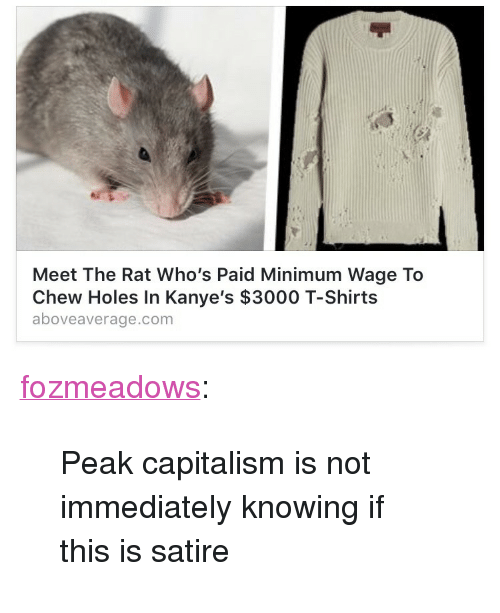 """Tumblr, Holes, and Blog: Meet The Rat Who's Paid Minimum Wage To  Chew Holes In Kanye's $3000 T-Shirts  aboveaverage.com <p><a href=""""http://fozmeadows.tumblr.com/post/160726210441/peak-capitalism-is-not-immediately-knowing-if-this"""" class=""""tumblr_blog"""">fozmeadows</a>:</p><blockquote><p>Peak capitalism is not immediately knowing if this is satire</p></blockquote>"""
