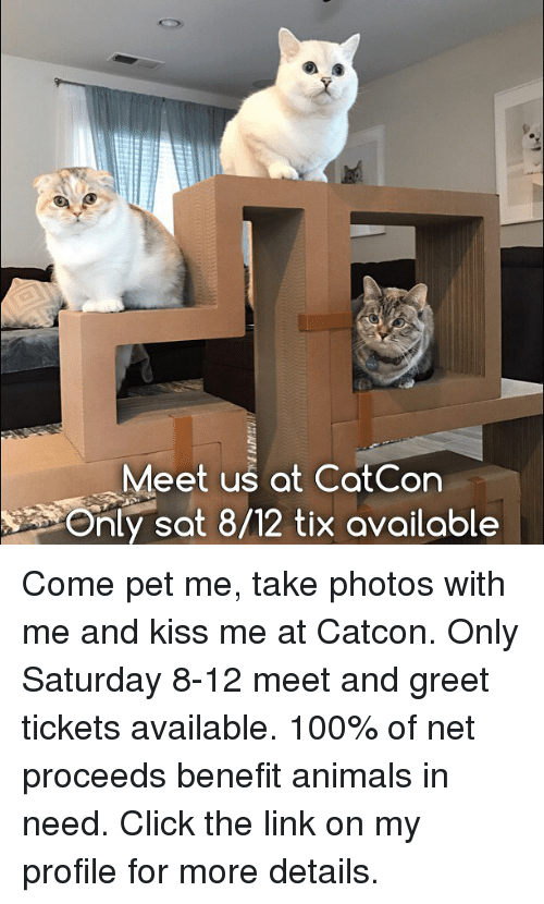 Tix: Meet us at CatCon  Only sot 8/12 tix available Come pet me, take photos with me and kiss me at Catcon. Only Saturday 8-12 meet and greet tickets available. 100% of net proceeds benefit animals in need. Click the link on my profile for more details.