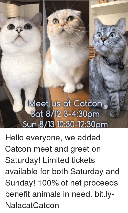 saturday-and-sunday: Meet us at Catcon  ot 8/12 3-4:30pmG  Sun 8/13 10:30-12:30pm Hello everyone, we added Catcon meet and greet on Saturday! Limited tickets available for both Saturday and Sunday! 100% of net proceeds benefit animals in need. bit.ly-NalacatCatcon