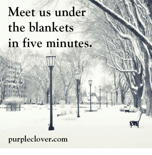 Purple Clover: Meet us under  the blankets  in five minutes.  purple clover com