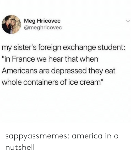 "hear that: Meg Hricovec  @meghricovec  my sister's foreign exchange student:  ""in France we hear that when  Americans are depressed they eat  whole containers of ice cream"" sappyassmemes:  america in a nutshell"