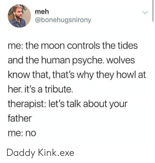 meh: meh  @bonehugsnirony  me: the moon controls the tides  and the human psyche. wolves  know that, that's why they howl at  her. it's a tribute.  therapist: let's talk about your  father  me: no Daddy Kink.exe