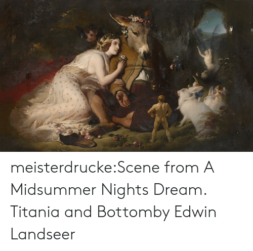 Tumblr, Blog, and Com: meisterdrucke:Scene from A Midsummer Nights Dream. Titania and Bottomby Edwin Landseer