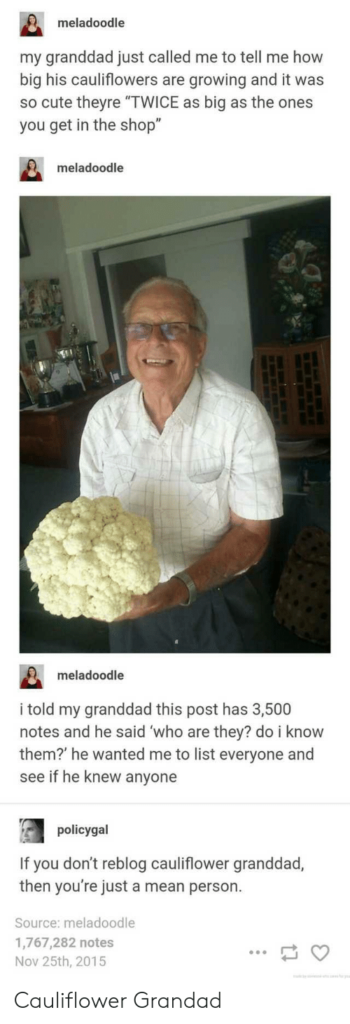 """grandad: meladoodle  my granddad just called me to tell me how  big his cauliflowers are growing and it was  so cute theyre """"TWICE as big as the ones  you get in the shop""""  meladoodle  meladoodle  i told my granddad this post has 3,500  notes and he said 'who are they? do i know  them?' he wanted me to list everyone and  see if he knew anyone  policygal  If you don't reblog cauliflower granddad,  then you're just a mean person.  Source: meladoodle  1,767,282 notes  Nov 25th, 2015 Cauliflower Grandad"""
