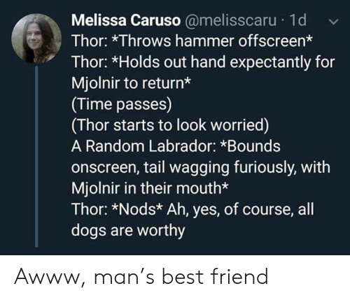 hammer: Melissa Caruso @melisscaru 1d  Thor: *Throws hammer offscreen*  Thor: *Holds out hand expectantly for  Mjolnir to return*  (Time passes)  (Thor starts to look worried)  A Random Labrador: *Bounds  onscreen, tail wagging furiously, with  Mjolnir in their mouth*  Thor: *Nods* Ah, yes, of course, all  dogs are worthy Awww, man's best friend