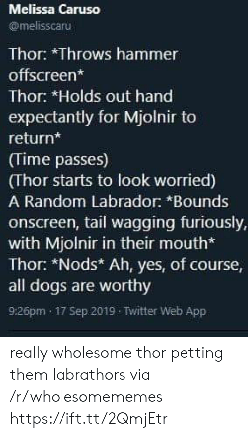hammer: Melissa Caruso  @melisscaru  Thor: *Throws hammer  offscreen*  Thor: *Holds out hand  expectantly for Mjolnir to  return*  (Time passes)  (Thor starts to look worried)  A Random Labrador: *Bounds  onscreen, tail wagging furiously,  with Mjolnir in their mouth*  Thor: *Nods* Ah, yes, of course,  all dogs are worthy  9:26pm 17 Sep 2019 Twitter Web App really wholesome thor petting them labrathors via /r/wholesomememes https://ift.tt/2QmjEtr