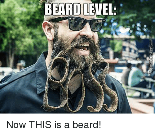 Meme Center: Meme Center.com Now THIS is a beard!
