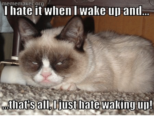 meme maker: meme maker it when wake up and  I hate Iats all, ljust late waking up!
