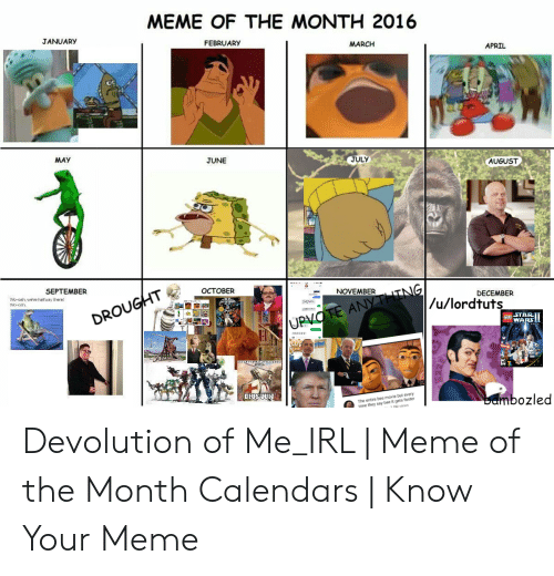 Irl Meme: MEME OF THE MONTH 2016  JANUARY  FEBRUARY  MARCH  APRIL  JULY  MAY  JUNE  AUGUST  -NOVEMBER  OCTOBER  SEPTEMBER  DECEMBER  /u/lordtuts  Wo-oh, we're haltvay there  STAR  WARS  The entire bee movie but every  ime they say bee it gets faster  mbozled Devolution of Me_IRL | Meme of the Month Calendars | Know Your Meme