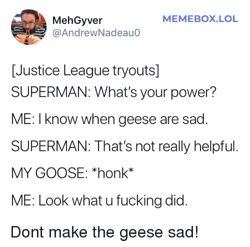 Justice League: MEMEBOX.LOL  MehGyver  @AndrewNadeauo  [Justice League tryouts]  SUPERMAN: What's your power?  ME: I know when geese are sad  SUPERMAN: That's not really helpful  MY GOOSE: *honk*  ME: Look what u fucking did. Dont make the geese sad!