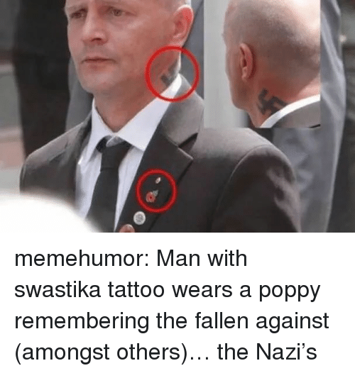 Tumblr, Blog, and Http: memehumor:  Man with swastika tattoo wears a poppy remembering the fallen against (amongst others)… the Nazi's